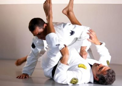Armlock From Guard